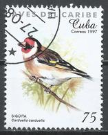 Cuba 1997. Scott #3854 (U) Caribbean Bird, Carduelis Carduelis * - Cuba