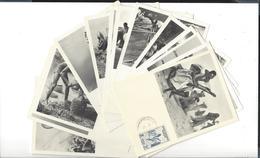 A. O. F.  Carte Maximum Série Complète De 15 Cartes Publicité Ionyl ( Soudan Mauritanie Niger Dahomey Cote D'Ivoire ... - Covers & Documents