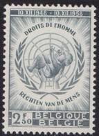 Belgie    .    OBP   .   1089       .     **     .    Postfris ZONDER  Charnier    .  / .  Neuf SANS  Charniere - Unused Stamps