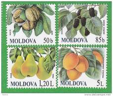 MOLDOVA   MOLDAVIE   MOLDAWIEN  MOLDAU ;  FRUIT; 2009 , MNH - Moldawien (Moldau)