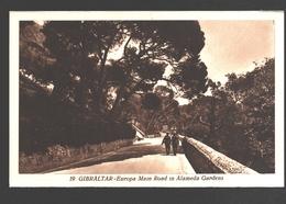 Gibraltar - Europa Main Road In Alameda Gardens - Gibraltar
