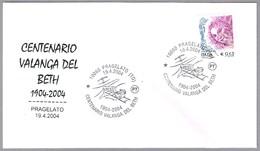 100 Años AVALANCHA DEL BETH - ACCIDENTE MINERO. Mining Accident. Pragelato, Torino, 2004 - Minerales