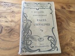 163 / ZOOTECHNIE RACES CHEVALINES ELEVAGE ET EXPLOITATION DES CHEVAUX DE TRAIT ET DES CHEVAUX DE SELLE 1923 - Dieren