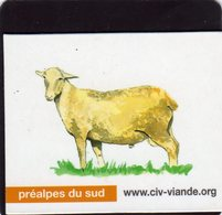 Magnets Magnet Viande Org Mouton Prealpes Du Sud - Animals & Fauna