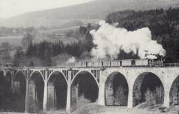 StLB Feistritztalbahn,U 44 Auf Dem Grub-Viadukt 8.1.1966,ungelaufen - Trains