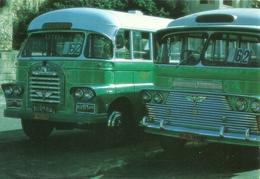 "1078 ""MALTA - PUBLIC TRANSPORT BUSES - ANNI '90"" CART. POSTALE ORIG. SPED. - Malta"