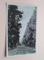BILTHOVEN Hobbemalaan ( Roosen ) Anno 1953 ( Zie/voir Photo ) ! - Bilthoven