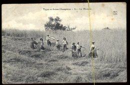 Types Et Scènes Champêtres: La Moisson - Cultures
