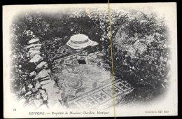 Hippone: Propriété De Monsieur Chevillot, Mosaïque - Annaba (Bône)