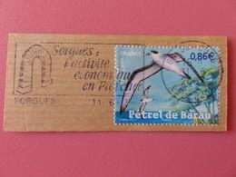 Timbre France YT 4036 - Faune En Voie De Disparition - Le Pétrel De Barau à La Réunion - 2007 - Flamme Sorgues - Used Stamps