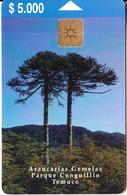CHILE - Araucarias Gemelas/Parque Conguillio-Temuco, Telefonica Telecard $5000, Chip GEM1.2, Tirage %20000, 01/00, Used - Chile