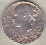 MEDAILLE REINE VICTORIA 1837 1897 , 60 ANS DE REGNE , En Argent - Unclassified