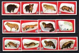 Matchbox Labels - Dolac / Travnik - Forrest Animals - Red, Yugoslavia - Boites D'allumettes - Etiquettes
