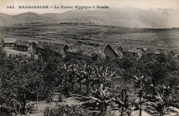 MADAGASCAR - La Ferme Hippique à Hoaka, Um 1910 - Madagaskar