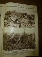 1918 LE MIROIR: Les Belges à Dixmude;English Soldier-dogs;Les Sangliers-mascottes Des Allemands;Combes,Herbeville;etc - Riviste & Giornali