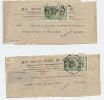 Bande Journal, 2 Lots Belgique 5c,Comtesse De Toulouse Lautrec,Château Bosc,Aveyron,Naucelle,Les Petites Fleurs Rosaire, - Zeitungsmarken (Streifbänder)