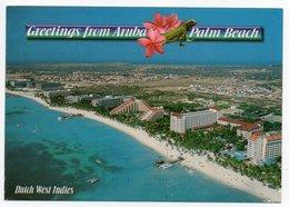 GREETING FROM ARUBA / PALM BEACH / NETHERLANDS ANTILLES / THEMATIC STAMP - BIRD - Aruba