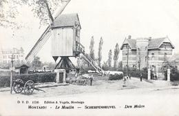 Montaigu/Scherpenheuvel-le Moulin à Vent-de Windmolen-animée-1908 - Scherpenheuvel-Zichem
