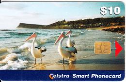 AUSTRALIA(chip) - Birds, Lennox Head, Tirage 65000, Exp.date 05/01, Used - Australia