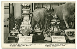 SOUTHERN RHODESIA : SALISBURY AGRICULTURAL SOCIETY / BULAWAYO AGRICULTURAL SHOW - MILNE CATTLE TROPHY (TUCKS) - Zimbabwe