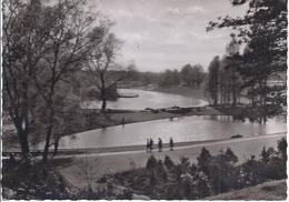 Bundesgartenschau 1959 Dortmund - Blick Vom Teehaus Zum Buschmühlenteich  -  71640-058 - Dortmund