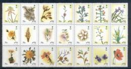 Saudi Arabia 1990 Flowers 75h, Blk21 MUH - Saudi Arabia