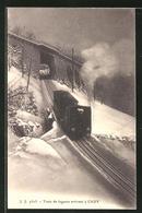 AK Caux Train De Lugeurs Arrivant - VD Vaud