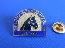 Pin's Sport Hippique Hippisme - The American Shire Horse Association Est. 1885 - Cheval (PF35) - Badges