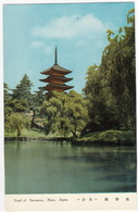 Pond Of Sarusawa - Pagode - Nara  - (Japan) - Japan