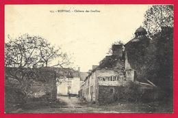 CPA Ruffiac - Château Des Greffins - Frankrijk