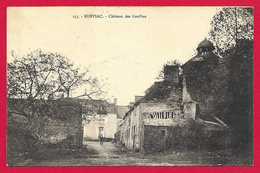 CPA Ruffiac - Château Des Greffins - France