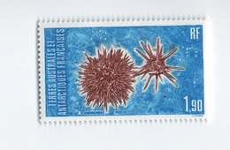 M P16L4  TAAF FSAT Neuf** MNH  Echinodermes  Oursins  1986 N° 117 - French Southern And Antarctic Territories (TAAF)