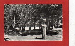 U50// CPSM /  03 NERIS Les BAINS - Parc Des Arènes /CP Semie Moderne  écrite 1963 - Neris Les Bains
