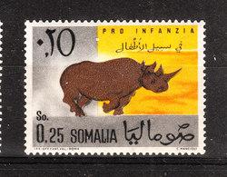 Somalia  - 1960. Rinoceronte. Rhinoceros. MNH - Rhinozerosse