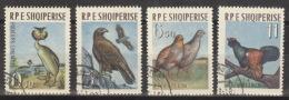 Albanien 741/44 O Vögel - Albanien