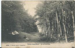 Kalmthout - Heide-Calmpthout - In De Bosschen - 4038 - F. Hoelen - 1909 - Kalmthout