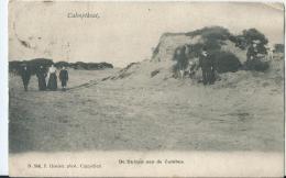 Kalmthout - Calmthout - De Duinen Aan De Cambus - N. 546 - F. Hoelen - Kalmthout