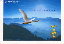 (18/2)   Swan Bird , Prepaid Card Postal Stationery - Swans