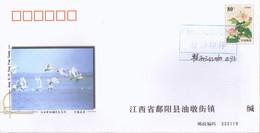 (18/2)   Swan Bird , Specimen Prepaid Cover  Postal Stationery - Swans