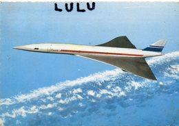 TRANSPORTS 137 : édit. Lyna Paris ; Le Concorde - 1946-....: Moderne