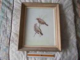 TABLEAU Peintre Babouot Oiseaux - Other Collections