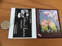 """Calendrier 1989 """"Tréboul Fleurs DOUARNENEZ (29) / Couple De Cols-roses (perruche)"""" - Petit Format : 1981-90"""