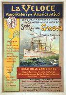 Italian Navigation Postcard La Veloce Genova-Plata-Brasile 1900 - Reproduction - Advertising