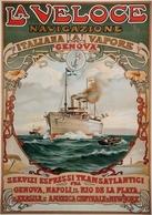 Italian Navigation Postcard La Veloce Genova-Rio De La Plata-Brasile-America Centale-New York 1889 - Reproduction - Advertising