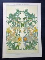 Lithographie Ancienne, Représentant Des Décorations, PETERELLE, Panneau Décoratif, Guérinet Ed. - Lithographies