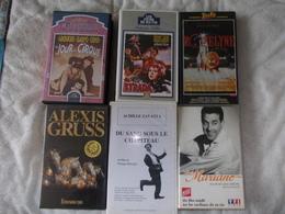 Lot De 6 K7 VHS Sur Le Cirque Collection Alain Nénert - Video Tapes (VHS)
