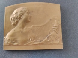 Plaque Bronze Exposition Universelle Gand 1913 P. Theunis. Superbe. - Autres