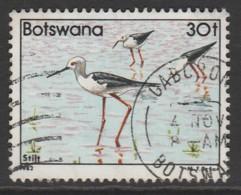 Botswana 1982 Birds 30 T Multicoloured SW 311 O Used - Botswana (1966-...)