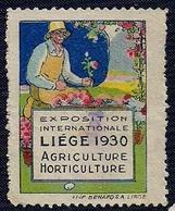 BELGIQUE - VIGNETTE - EXPOSITION INTERNATIONALE - LIÈGE  1930. - Postage Labels