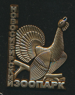 Pin ZOO Novosibirsk, Russia - Grouse - Badges